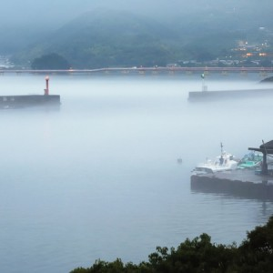 尾鷲港の海霧